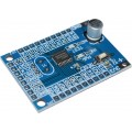 N76E003AT20 Minimum System Development Board